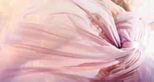 Free Download Dance Upon the Air English Novel Pdf