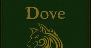 Free Download Broken Dove English Novel Pdf